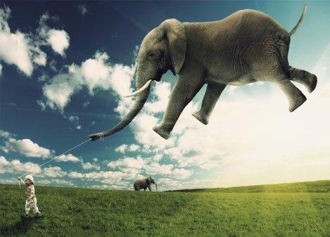 elefantevolando